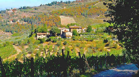 Poggio all'Olmo farmhouse holiday accommodation in Chianti